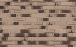 Клинкерная фасадная плитка Feldhaus Klinker R980 bacco argo darko